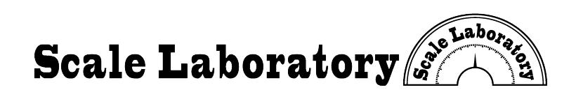 Scale Laboratory(スケラボ)は、伊豆を拠点に「ひとりでも多くの人が、生活と地続きに無理なく芸術を楽しめるローカル」を目指し、役目を終えた施設や、使われていない場所などに一時的に活動の場(=舞台)を作り上げ、様々な芸術に関わる企画を行っています。主宰は舞台監督の川上大二郎
